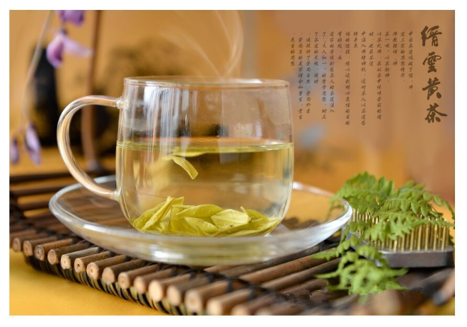 缙云轩辕黄茶