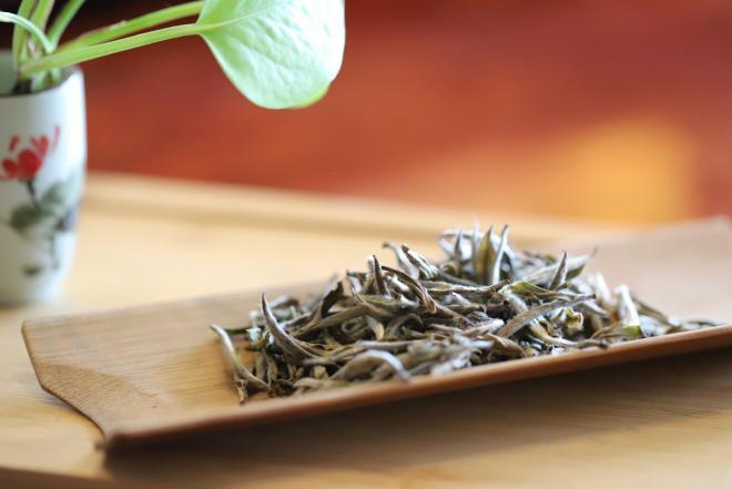 仙都轩辕白(白茶)